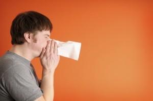 Allergy Services fayetteville arkansas