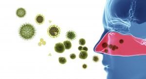 hay fever fayetteville arkansas